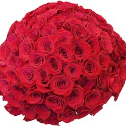 100 rose rosse bouquet