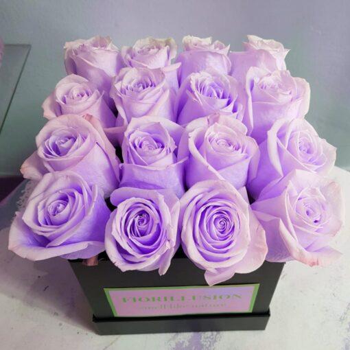Square box 16 rose rosa