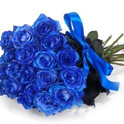 Fascio di rose blu